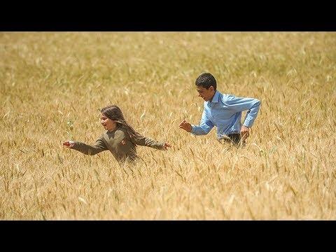 Breath (Nafas) - Trailer, 7th Iranian Film Festival Australia 2017