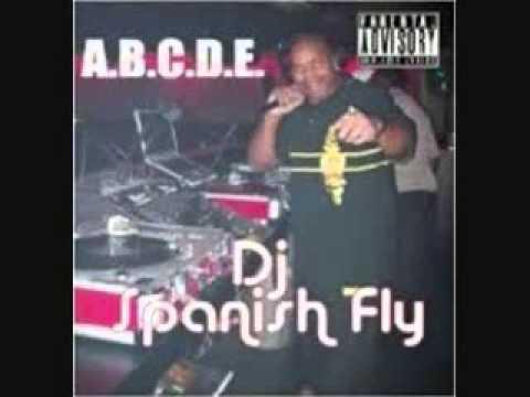DJ Spanish Fly - Alright