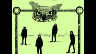 Owl - Medicine Mirror