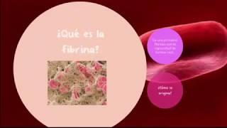 Fibrina.