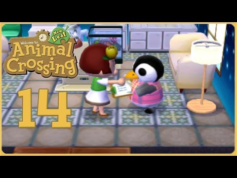 Aurora the Author & A Newfound Beetle Obsession • Animal Crossing: New Leaf - Episode #14