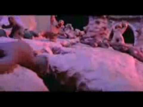 Bongacam – online live webcams cam shows bongacams bongocams