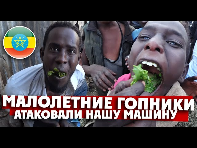 МАЛОЛЕТНИЕ ГОПНИКИ АТАКОВАЛИ НАШУ МАШИНУ / Харар, Эфиопия / Планетка
