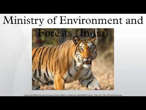 Ministry of Environment and Forests (India)