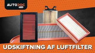 Udskiftning af Luftfilter selv - online video