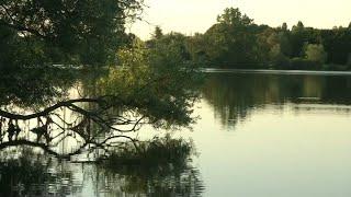 Trois enfants se noient dans un lac près de Chalon-sur-Saône