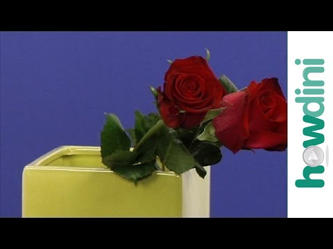 How To Make Cut Roses Last Longer Youtube
