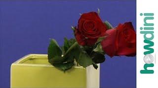 How Make Cut Roses Last Longer