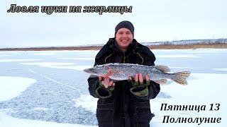 Зимняя РЫБАЛКА!!! Ловля ЩУКИ на жерлицы В ПОЛНОЛУНИЕ. Winter FISHING!!! Pike fishing.
