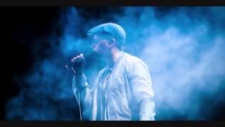 Xavier Naidoo meets Beryllium Sounds - Frei sein (Electro Mix)