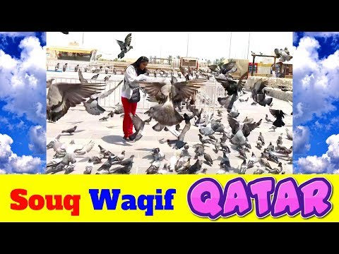 Souq Waqif qatar doha irani market birds
