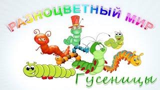 Гусеницы. Часть 2 - Гусеницы мохнатые. Развивающее видео для детей.