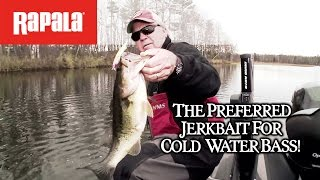 Rapala® Shadow Rap® Long Trailer