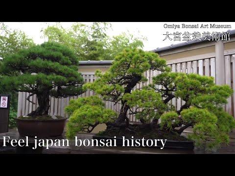 [ASMR Indonesia] Alia Ngantuk Bisikin Kamu Biar Semangat😳 (Vtuber Indonesia) from YouTube · Duration:  5 minutes 4 seconds
