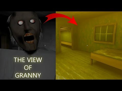 How does Granny see? The View of Granny
