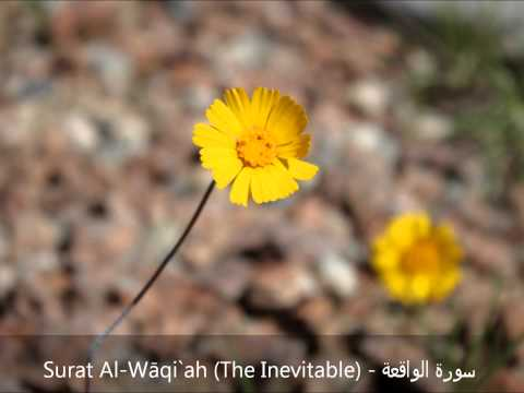 Surat Waqiaa - سورة الواقعة  Ahmed Al Ajmi أحمد بن علي العجمي