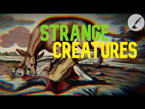 5 Strangest Monsters Ever Reported