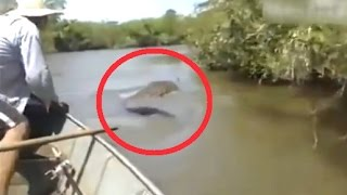 15 Amazon River Monsters thumbnail