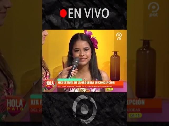 Festival de la Orquídea 2019 en Hola País