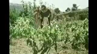 Los profetas - Pelicula Cristiana - Losbienabenturados7