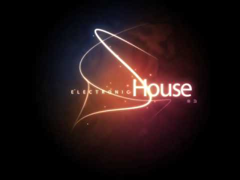 Electronic House #3