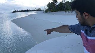 رحلتي الى جزر المالديف   طلع فيها سمك قرش !!