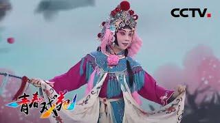 《青春戏苑》 20200526 京韵芬芳| CCTV戏曲