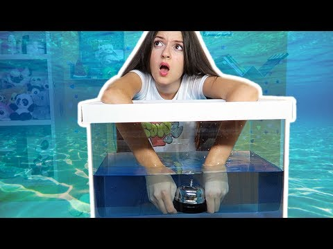 COSA C'È NELLA SCATOLA SOTT'ACQUA - What's in the box challenge underwater #2