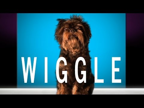 "Jason Derulo - ""Wiggle"" feat. Snoop Dogg (Cute Dog Version)"