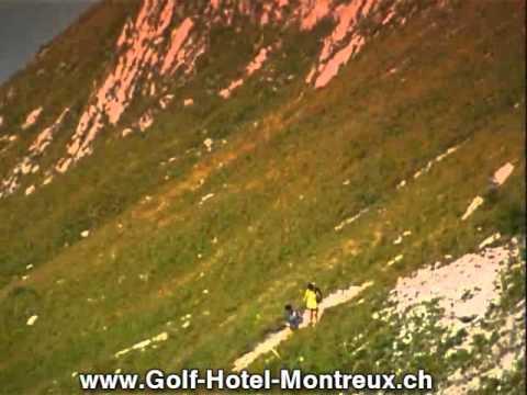 Hotel Montreux, Naturerlebniss pur in der Schweiz