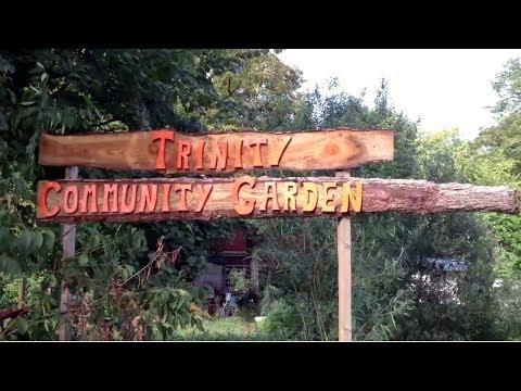 Trinity Community Garden, Bristol, UK