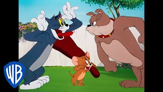 Tom & Jerry | Classic Cartoon Compilation | Tom, Jerry & Spike