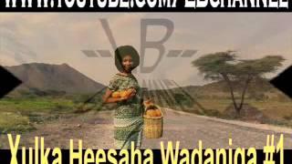 Xulka Heesaha Wadaniga #1