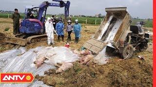 An ninh 24h | Tin tức Việt Nam 24h hôm nay | Tin nóng an ninh mới nhất ngày 12/06/2019 | ANTV