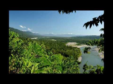 Best tourist attractions in Peru - Puerto Maldonado - Bahuaja-Sonene National Park