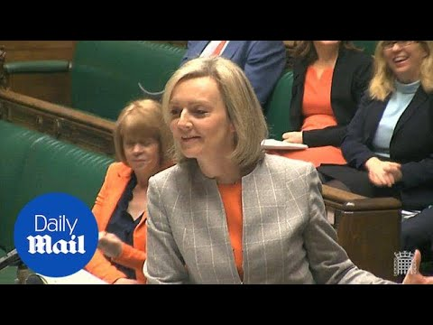'Barking dogs deter drones': Justice chief Liz Truss baffles MPs - Daily Mail