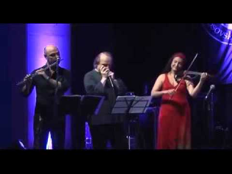 SNOW OWL - North city jazz @ blues fest Kosovska MItrovica 2015