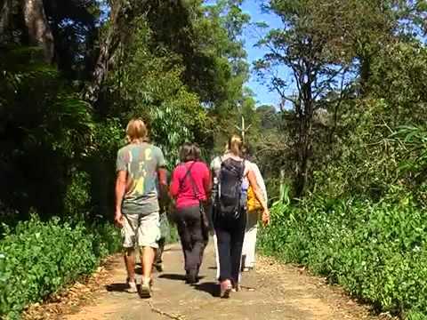Gavi Eco Tourism, Wild life sanctury and hill station, Kerala, India