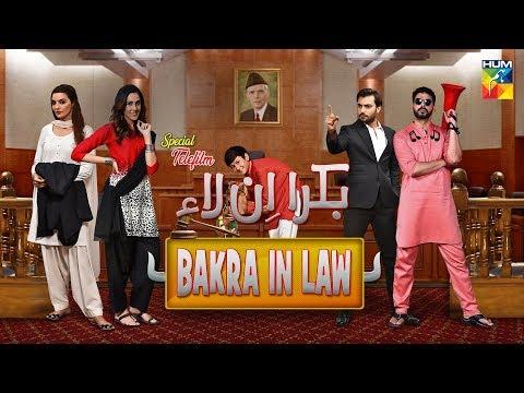 Bakra In Law   HUM TV   Telefilm