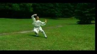 Repeat youtube video Shaolin LuoHan Quan