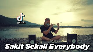 DJ STEREO LOVE x SAKIT SEKALI EVERYBODY x SULING DAMON VOCATION ( DJ DESA Remix )