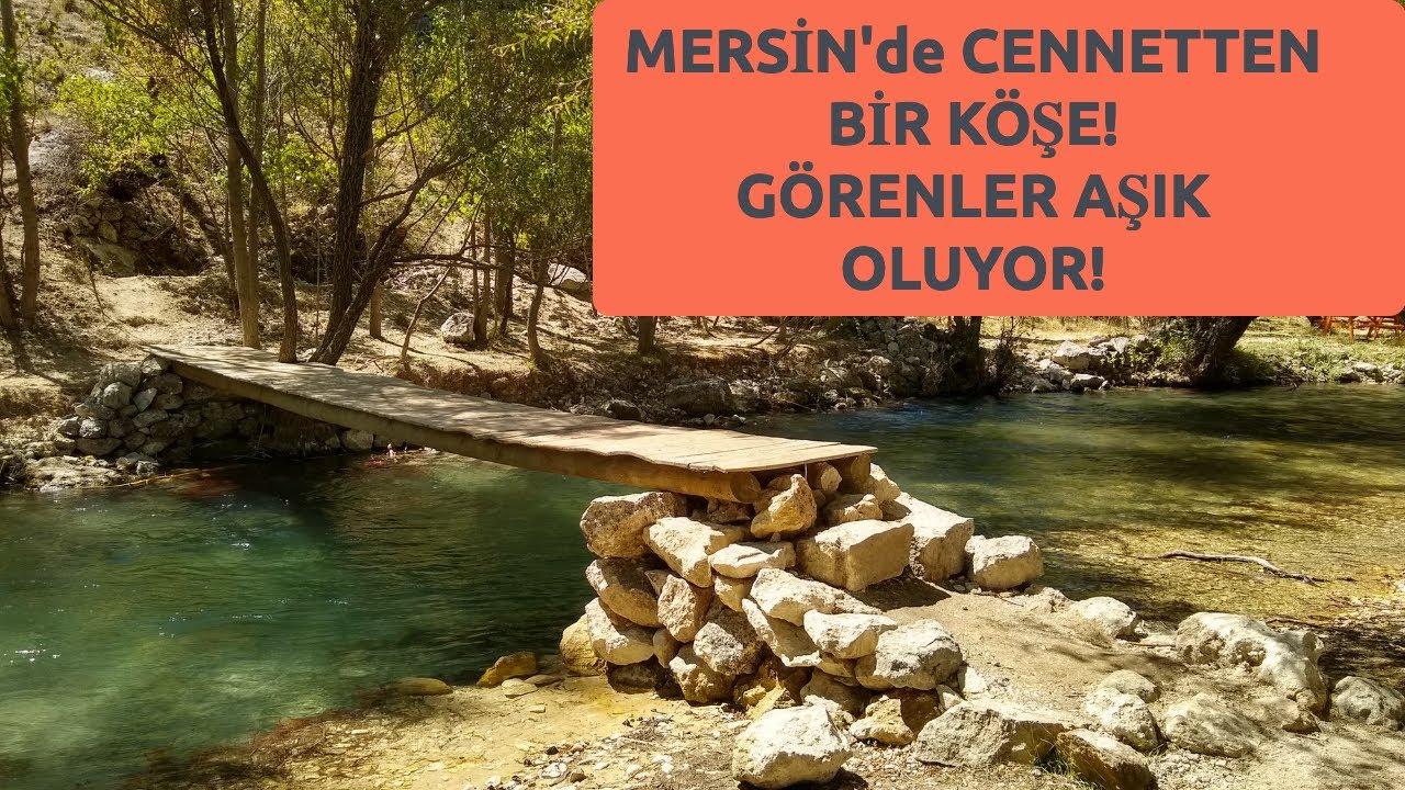 Saybükü Piknik Alanı - Sarıaydın Köyü Mersin