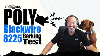 Poly | Blackwire 8225  Dog Barking Test!