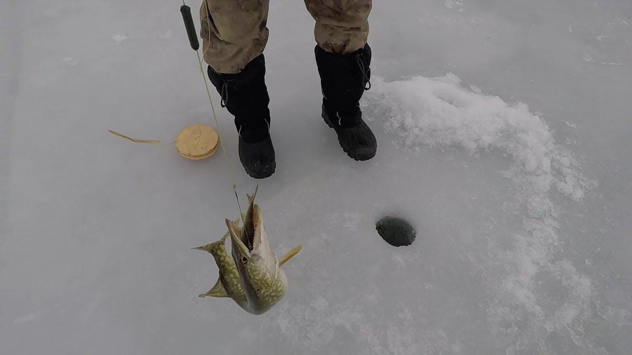 Зимния рыбалка в казахстане