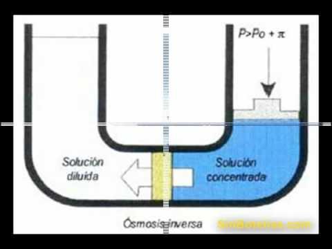 Descalcificador doovi for Descalcificador de agua casero