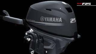 2011-Yamaha-Raptor-125-Action06 Beechmont Yamaha