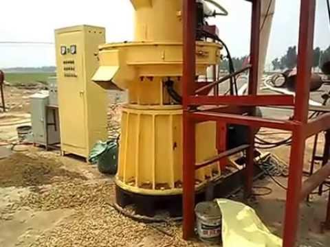 Pellet Mill for Making Pellets from Rick Husk