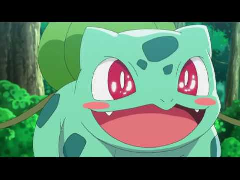 Ashs Kanto Pokémon  - Tribute [AMV] - I Choose You