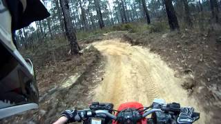 Yamaha Blaster Trail Ride