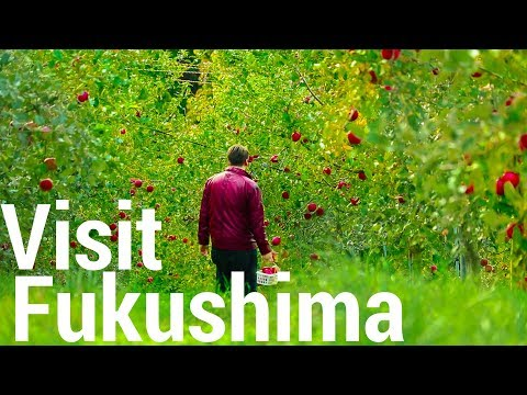 Fukushima 7 Years After The Catastrophe Is Absolutely Amazing -  Travel Japan